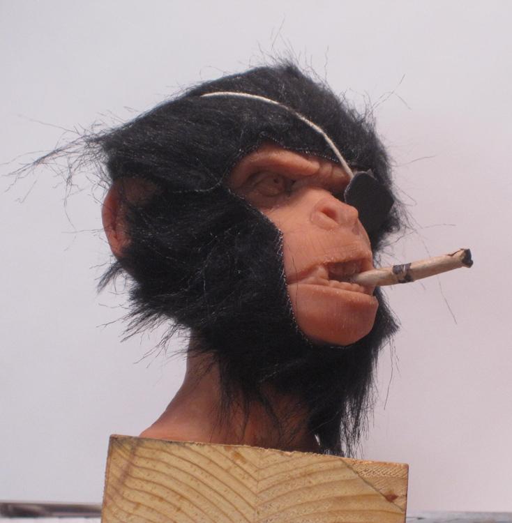 macaque_maquette